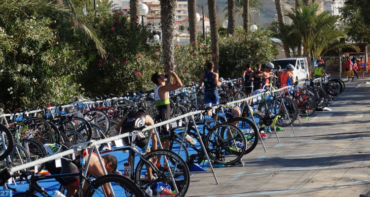 sprint triathlon distances